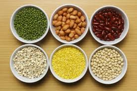 seeds, grains and legumes